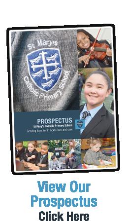 prospectus-new2
