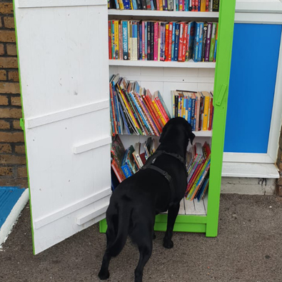 Maggie loved our visiting book hut! So many books to choose from
